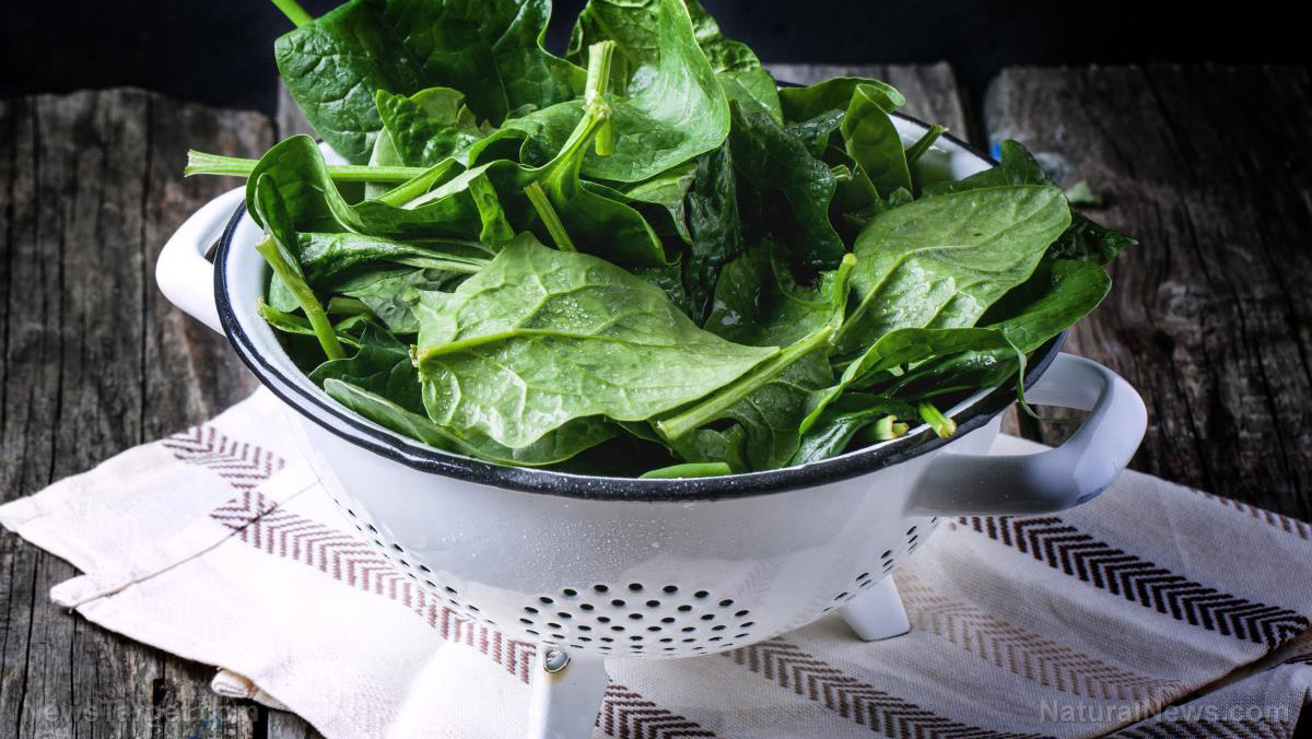 Spinach Leaves in Colander