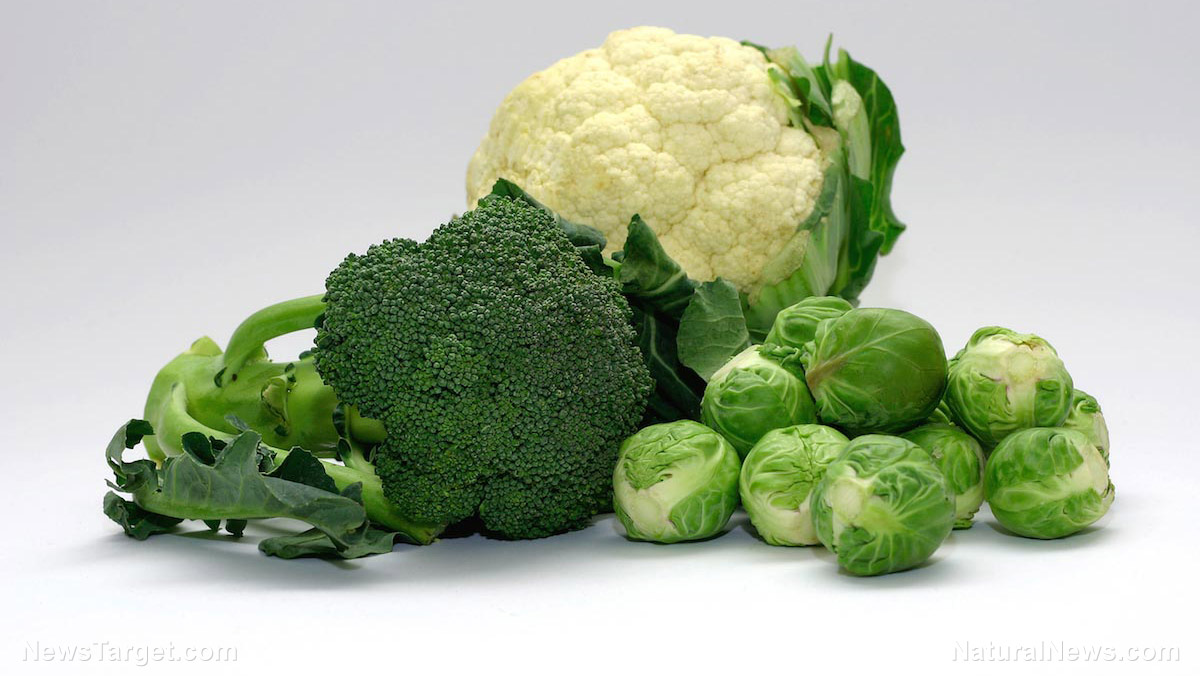 Vegetables Brussel Sprouts Cauliflower Broccoli